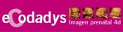 ECODADYS 4D
