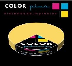 Color Plus abre 1 de cada 4 tiendas de su sector durante el primer semestre del año