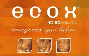 Ecox4D-5D abrirá nueva franquicia en Elche.